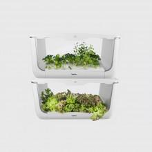 Микроферма Vegebox H-Box level 2