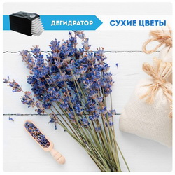 Сушка растений цветов дегидратор Dream Vitamin DDV-07 купить сушилку
