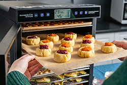 Печенье в дегидраторе Rawmid Modern RMD-10